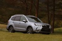 forester-31